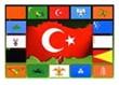 Türk Devletleri'nin genel özellikleri