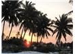 Tanzanya/ Zanzibar Adası