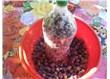 Evde siyah zeytin yapımı