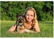 Ev Yaşamını Farklı Kılan Evcil Hayvanlar