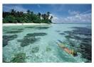 Maldivler / Bandos adası