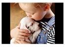 İnsanların hayvanlardan öğrenecekleri..!