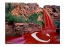 Ben Türk  oğlu Türk'üm