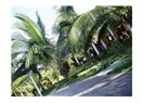 Küba seyahati