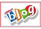 Neden blog yazıyorum... (mim)