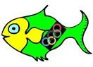 Büyük Balığın İçindeki Olimpiyatlar