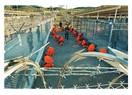Guantanamo  insanlık ayıbı