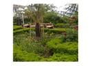 Ziraat Çay Bahçesi / Rize
