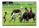 Ben çocukluğumu, köyümü özlüyorum