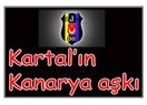 Kartal'ın kanarya aşkı