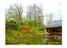 Hasselt Japon Bahçesi