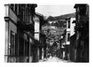 Hüzün sokağı sakini