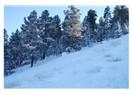 Kars-Sarıkamış...