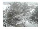Erzincan'a Kar yağdı:)