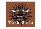 Türk Solu'nun psikolojik analizi... Ve topal demokrasi