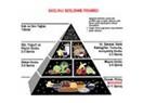 Sağlık için sihirli maddeler-2: Mineraller