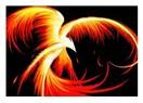 Simurg - Anka - Phoenix