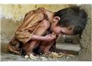 Başkalarının acısını paylaşmak
