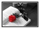 Sevmenin sırrı kalbindeki mutluluk olabilir mi?