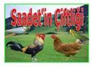 Saadet'in çiftliği