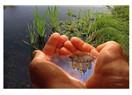 Arsenikli su kavgası