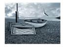 Karşı sahil
