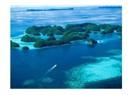Denizler ve Yaşanan Gelgitler
