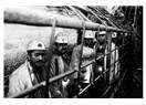 GSMH ve madenlerin etkileri