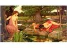 Mordoğan Narcissus proje bilgileri