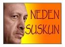 Erdoğan neden suskun