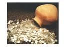 Abi altın buldunuz mu? (1)