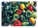 Sağlıklı yaşam için beslenme