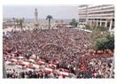İzmir' in fidanları