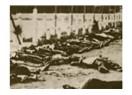 Fransa'nın kurtuluş günü katliamı