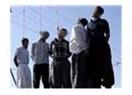 İran'da sallandırılanlar!
