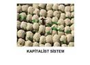 Kapitalist sistem