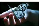 İçimizdeki kelebekler