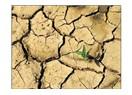 Küresel ısınma tek dişi kalmış canavar