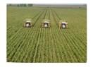 İnsanların geleceği tarıma bağlı