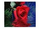 Bugün çocuğu olmayan veya kaybeden veya vefat eden annelerin gününü kutluyorum.