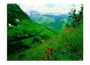 Dağlarda