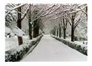 İstanbul'a kar yağıyor.