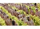 Şarap Üzüm Bağlarında Çıplak Protesto