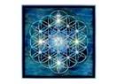 Yaşamın geometrisi