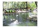 Küçük, nezih, gizemli bir park ve bir öneri...