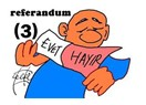 Madde madde referandum(3)