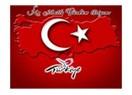 Gri Türkiye