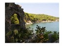 Antalya'da antik bir cennet: Phaselis
