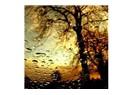 Yağmursuz sırılsıklam