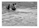 Sel baskını ve kentleşme